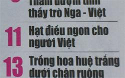 Hạt điều Vietnuts trên báo Khoa học phổ thông