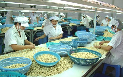 Cashew and paradox import raw materials for processing
