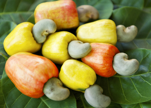 Are cashew healthy for a diet?